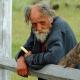 Старение — болезнь? Лженаука неистребима!