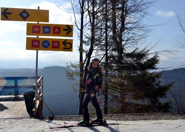 Лыжник на распутье