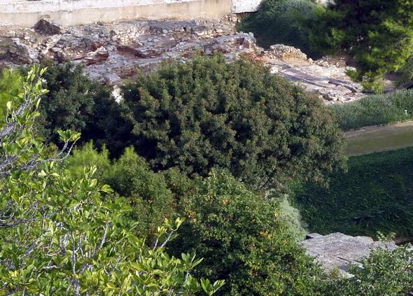 Храм Амона-Зевса